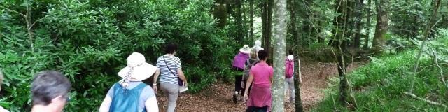 bagnoles-orne-sortie-nature-randonnee