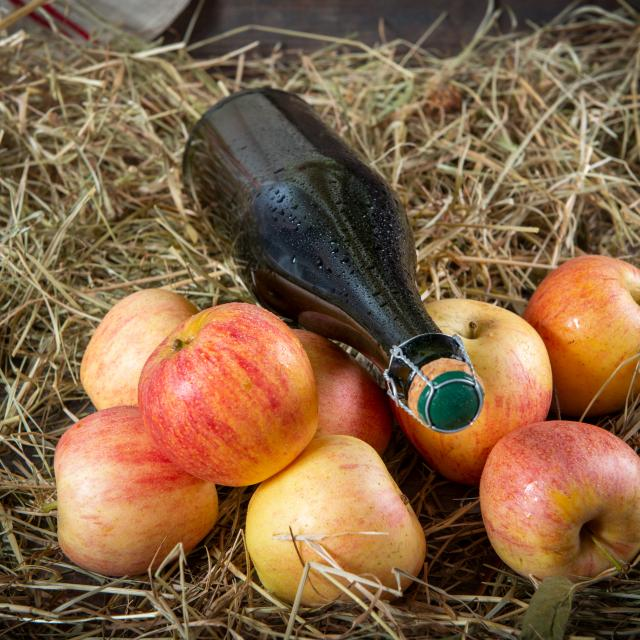 Bottle of cider with organic apples on the straw