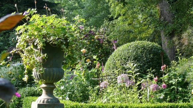 Bagnoles Orne Jardin Retire Fleur Nature Plante Arbre Remarquable Annie Blanchais 6
